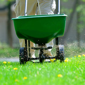 apply fertilizer