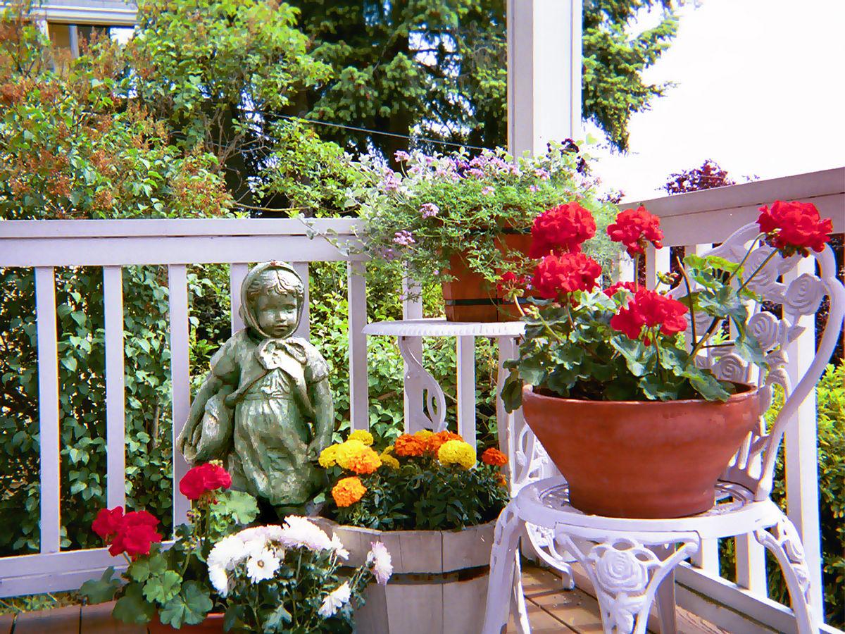 Beau Container Gardening