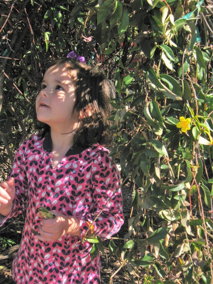 Girl in Vines